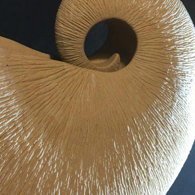Nautilus- detail