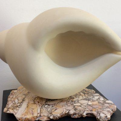 Tulip shell/ breccia slice